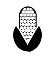 corn vegetable isolated icon vector image
