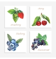 Berry Paper Cards vector image