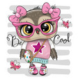 cartoon owl in pink glasses vector image vector image