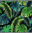 fern monstera seamless leaves black background vector image vector image
