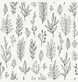 hand drawn plants branches leaves seamless vector image vector image