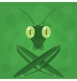 Mantis icon on a green background vector image vector image