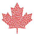 maple leaf composition of dollar and dots vector image