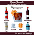 negroni cocktail infographic set of isolated vector image vector image