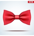 Realistic red bow tie vector image vector image