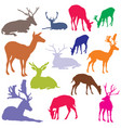 set of colorful deer silhouettes vector image