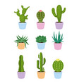 set of succulents and cactus vector image vector image