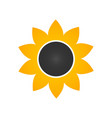 sunflower icon in flat style isolated on white vector image vector image