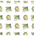 sweet pepper and lettuce leaves seamless pattern vector image