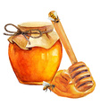 Watercolor Honey jar and honey stick vector image vector image