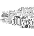 why go to a culinary school text word cloud vector image vector image