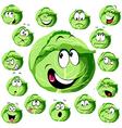 cabbage cartoon vector image