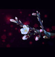 flowering branch of almond with pink flowers from vector image vector image