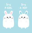 its a girl boy two cute twin bunny rabbit set vector image vector image
