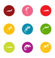 raptor icons set flat style vector image vector image