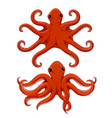 red octopus hand drawn sketch vector image vector image