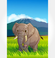 Wild animal set 5 of 32 - elephant vector | Price: 1 Credit (USD $1)