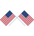 two us flag vector image vector image