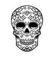 vintage mexican sugar skull isolated on white vector image vector image
