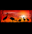 birds cranes on sunset background vector image vector image