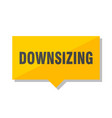downsizing price tag vector image vector image