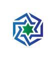 hexagon star business logo vector image vector image