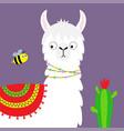 llama alpaca face bee cactus childish baby vector image