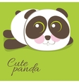 Cute young baby panda bear vector image