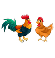 Funny couple of rooster and hen vector image