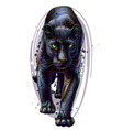 panther artistic sketchy color portrait vector image