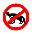 stop tasmanian devil wild animal is forbidden one vector image vector image