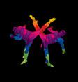 taekwondo fighting vector image vector image