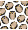 animal hedgehog pattern vector image vector image