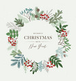 christmas round frame with poinsettia holly vector image vector image
