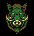 colorful serious boar head concept vector image vector image