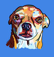 painting of funny face of chihuahua dog on blue vector image vector image