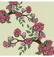 Sprig of Rose flower bush frame vector image