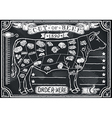 Vintage Graphic Blackboard for Butcher Shop vector image vector image