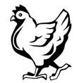 chicken icon chicken silhouette isolated vector image