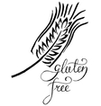 Gluten free label Handwritten grunge vector image
