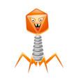 bacteriophage virus vector image vector image