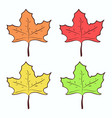cute hand drawn maple leaves set vector image