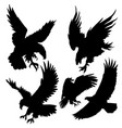eagle silhouette attack hunt sky set 2 vector image