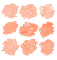 orange watercolor set on white background vector image