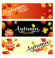 Set sale autumn bright banners on light orange