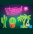 tropical neon signs cactus and palm summer logo vector image