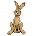 typical easter bunny vector image