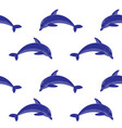 dolphin embroidery seamless pattern vector image vector image