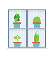 Flat Design Potted Plants In The Box vector image vector image