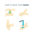 Hands Washing vector image